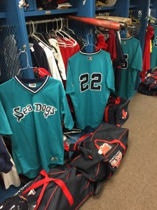Sea Dogs celebrating 1995 Night at Hadlock Field.